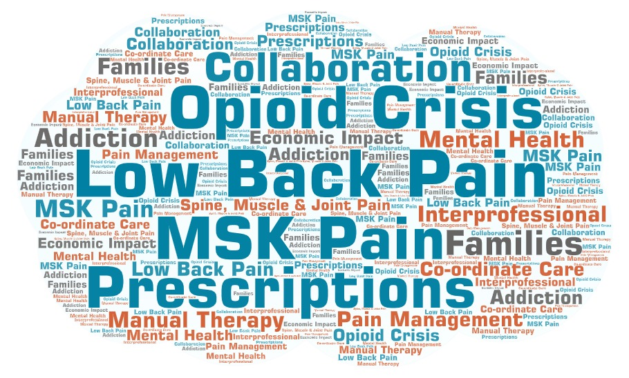 Word cloud of keywords related to spine. muscle and joint pain and the opioid crisis, including: Spine, Muscle & Joint Pain, MSK Pain, Low Back Pain, Manual Therapy, Addiction, Pain Management, Mental Health, Prescriptions, Co-ordinate Care, Collaboration, Interprofessional, Families, Economic Impact